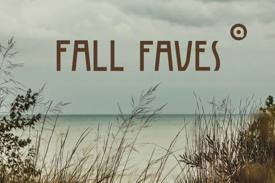 Q Fall Playlist 2014