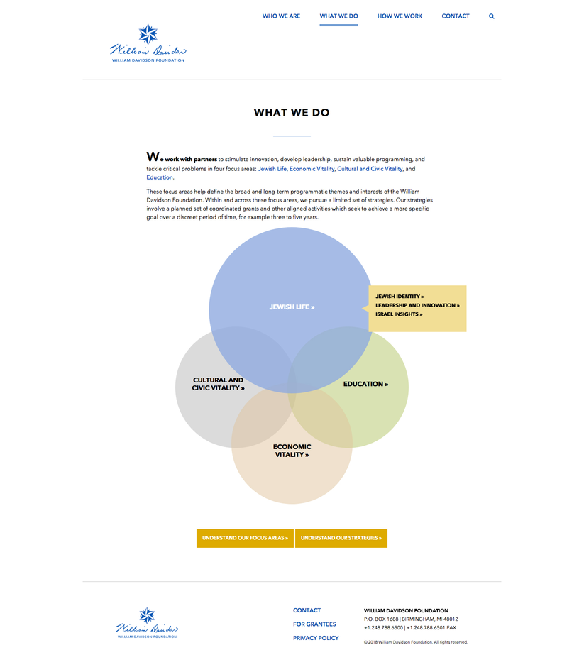 Website, What We Do Page